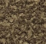 Earth Coarse Turf