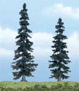 "4 - 5"" Spruce Trees (2)"